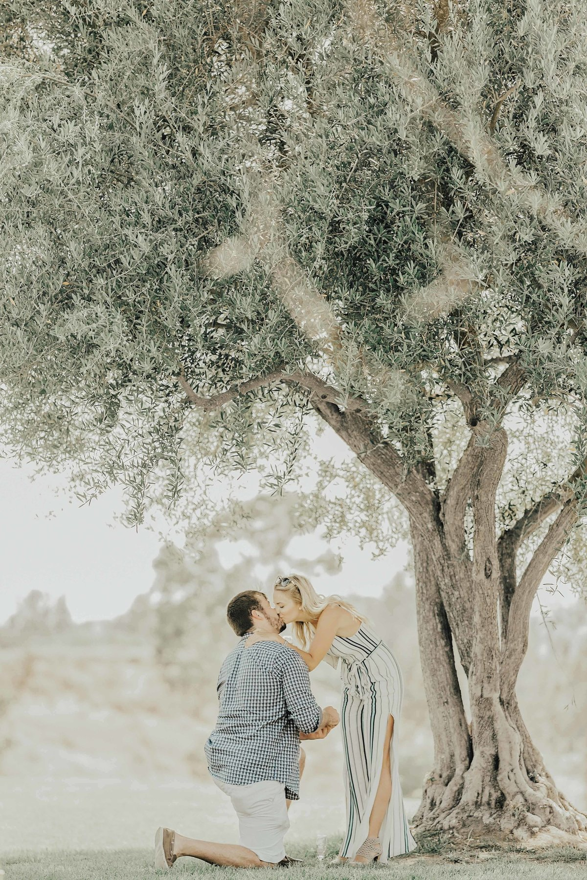 Babsie-Ly-Photography-Fine-Art-Film-Surprise-Proposal-Photographer-Temecula-Thornton-Winery-California-005