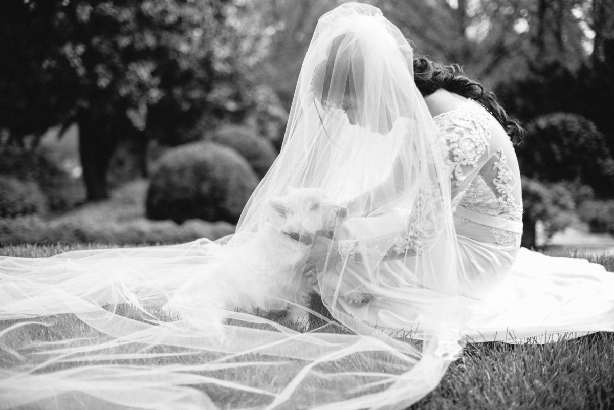 Classic-Black-and-White-Wedding-4