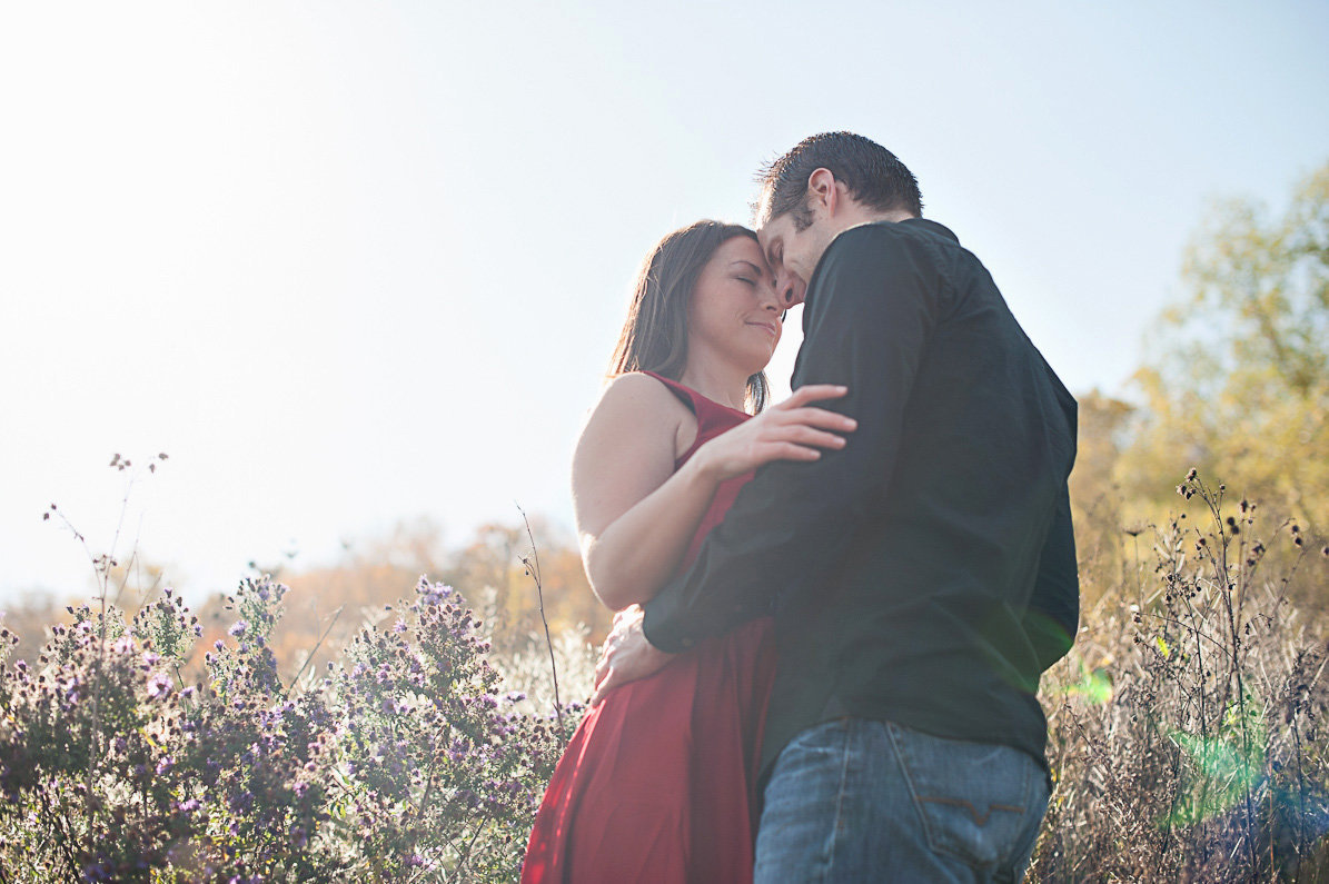 springridge_farm_engagement_miltonw