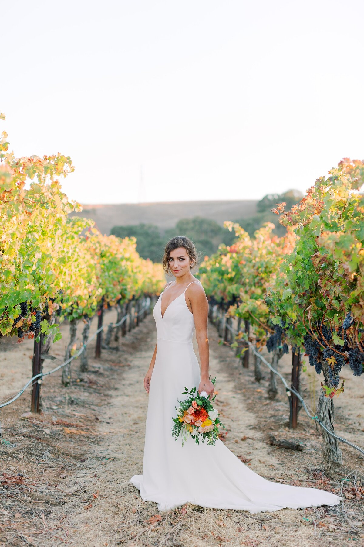 20191020 Modern Elegance Wedding Styled Shoot at Three Steves Winery Livermore_Bethany Picone Photography-166_WEB