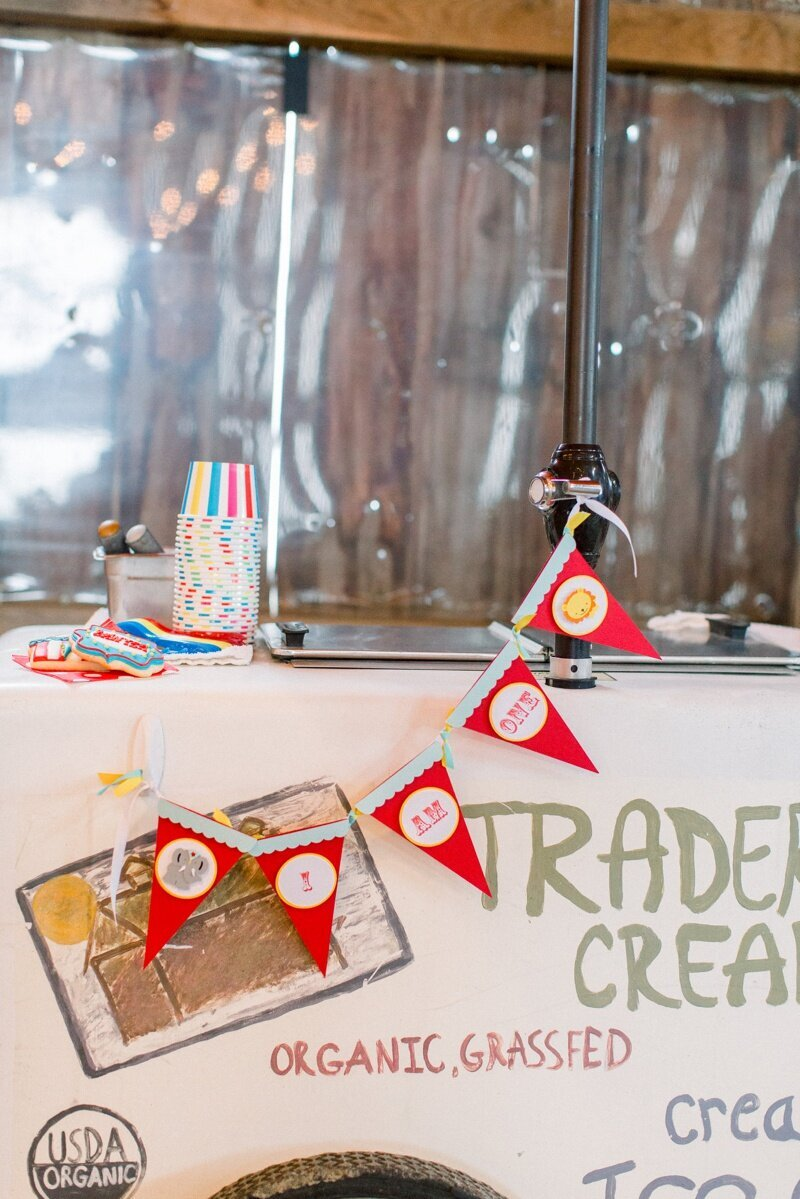 Circus Themed 1st Birthday Indianapolis Party Planner_0079