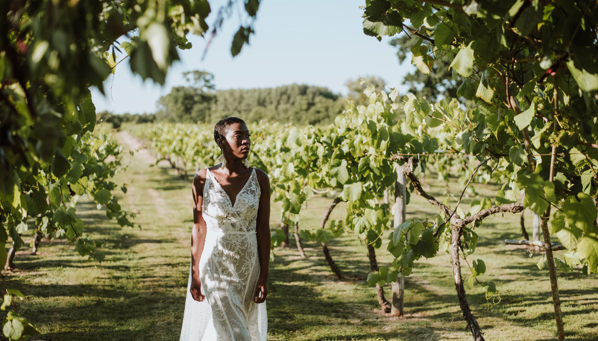 The Stars Inside - Vineyard Destination Wedding - Laura Martha Photography (49)