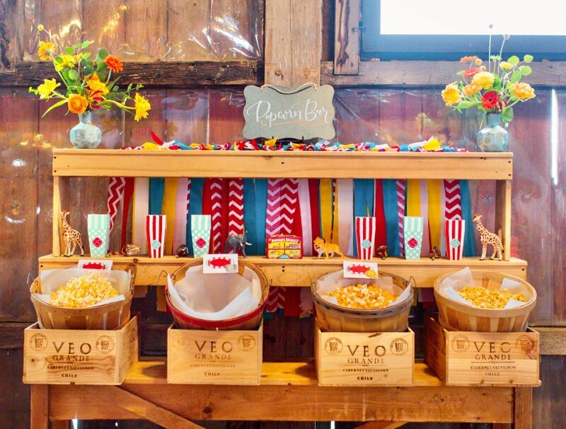 Circus Themed 1st Birthday Indianapolis Party Planner_0071