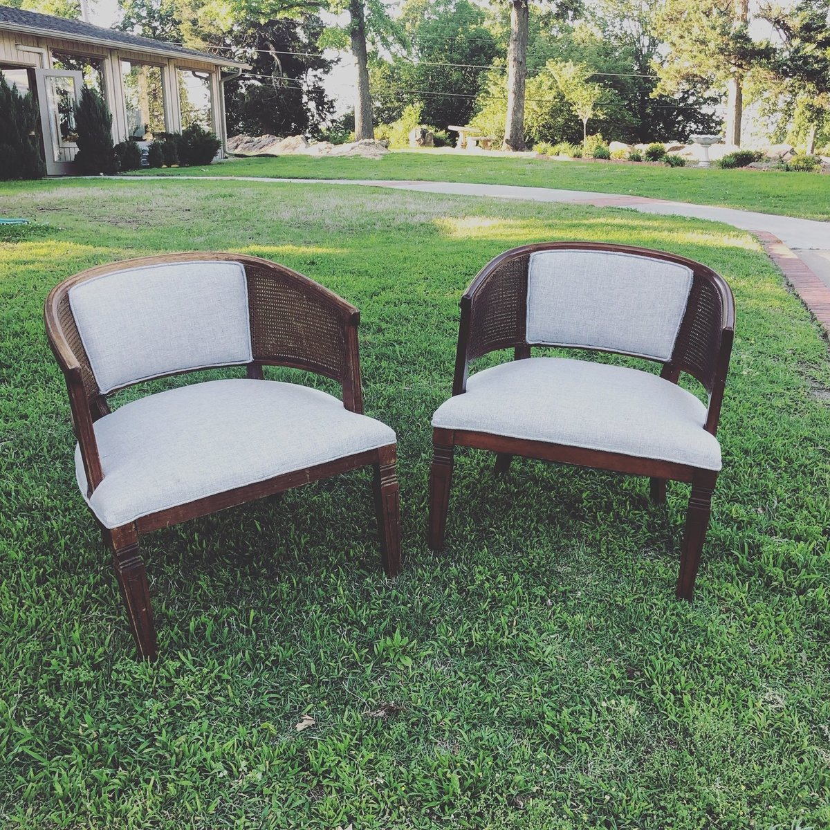 antique cane barrel back chairs