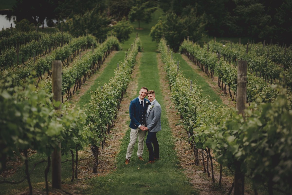 two grooms together in a vineyard