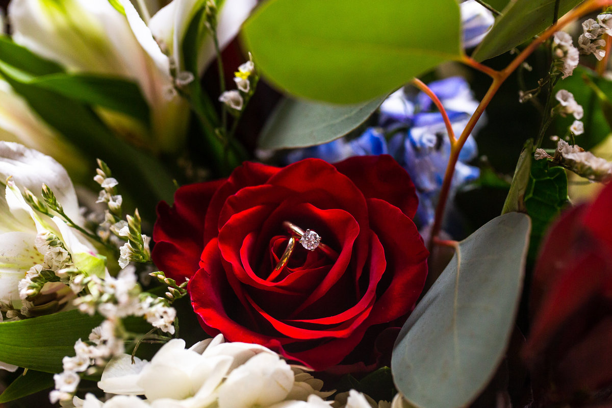 madeline_c_photography_dallas_wedding_photographer_megan_connor-5