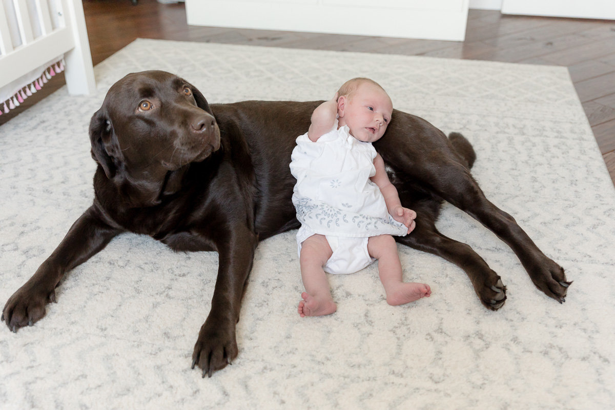 Doggy sister and newborn sister pose for the camera