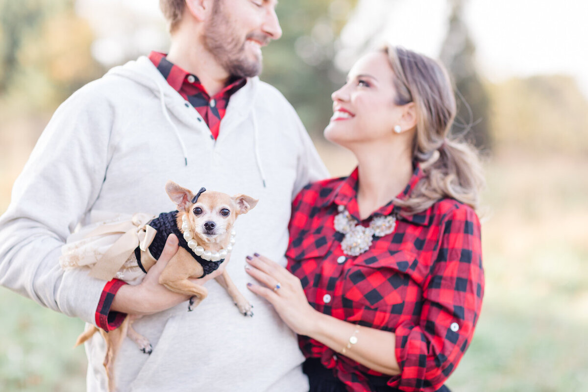 Sara+Brad Dog Holiday Mini Chadds Ford-1290