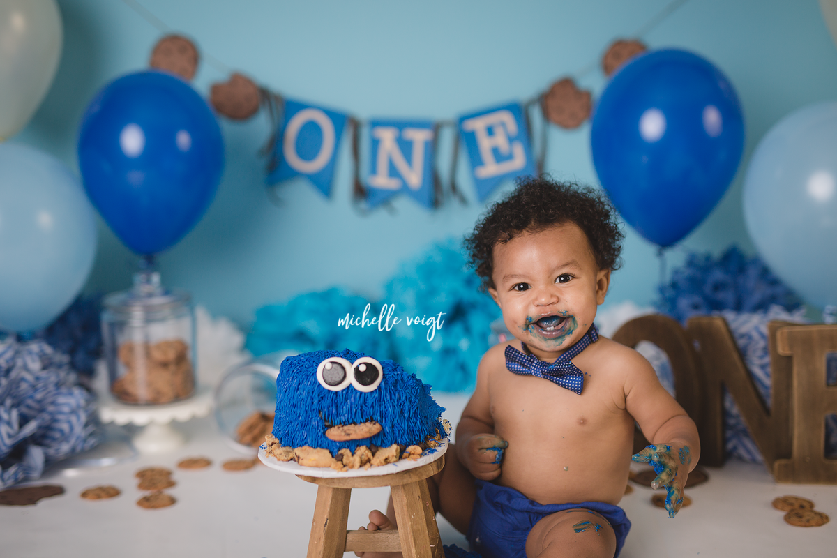 one year cake smash - cookie monster theme