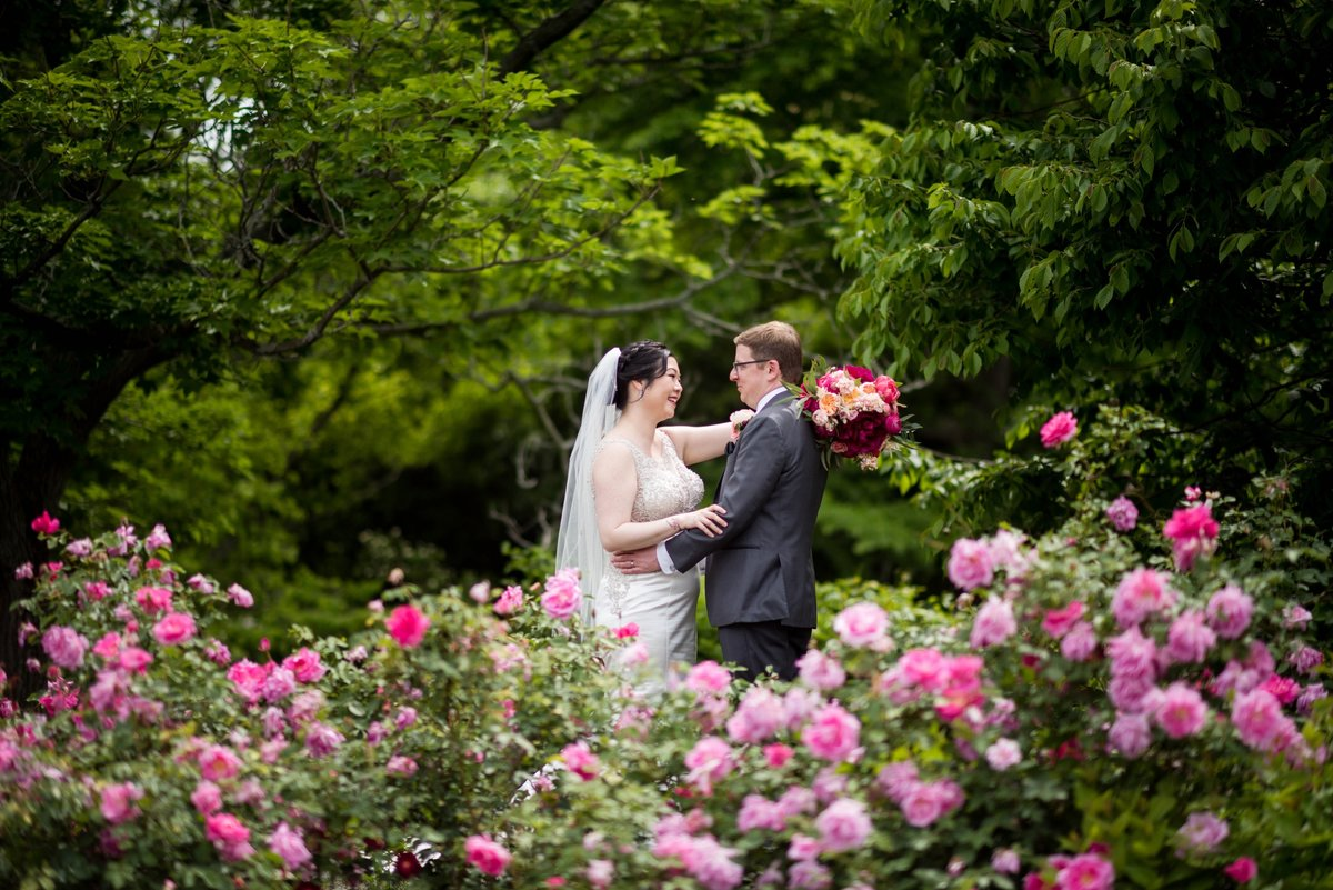 arnold arboretum wedding portrait