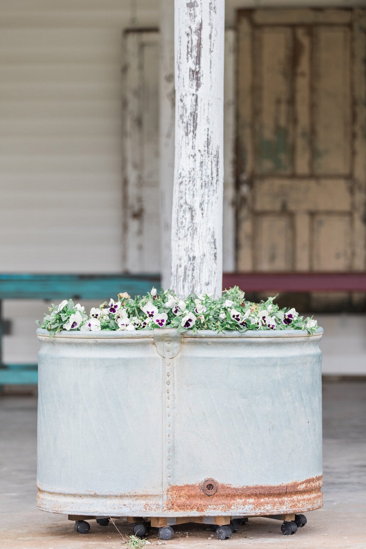 A feed trough filled with florals for a wedding