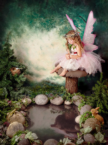Enchantment fairy photography-Lake Tapps