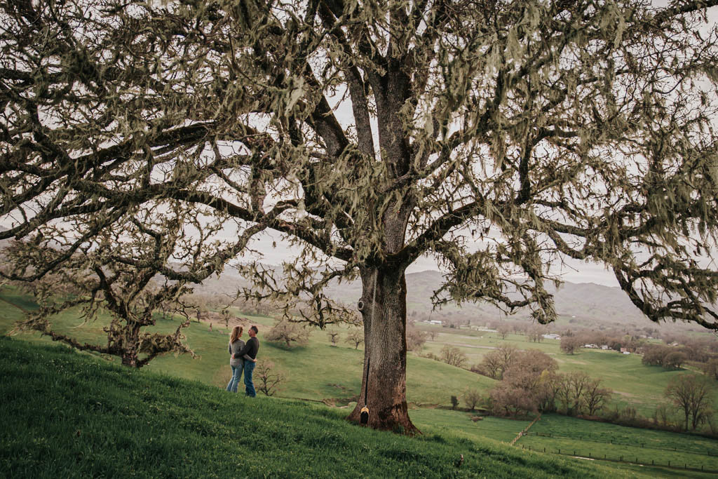 Ashley Kaplan Photography San Francisco Bay Area Couples Photographer engagement session-3