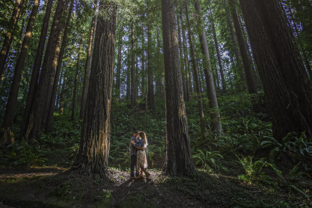 Redway-California-engagement-photographer-Parky's-Pics-Photography-Humboldt-County-redwoods-Avenue-of-the-Giants-Humboldt-Redwoods-State-Park-engagement-1.jpg