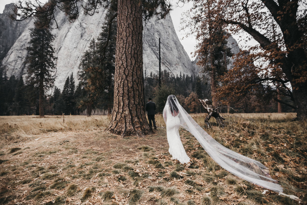 athena-and-camron-how-to-elope-in-yosemite-valley-ceremony2