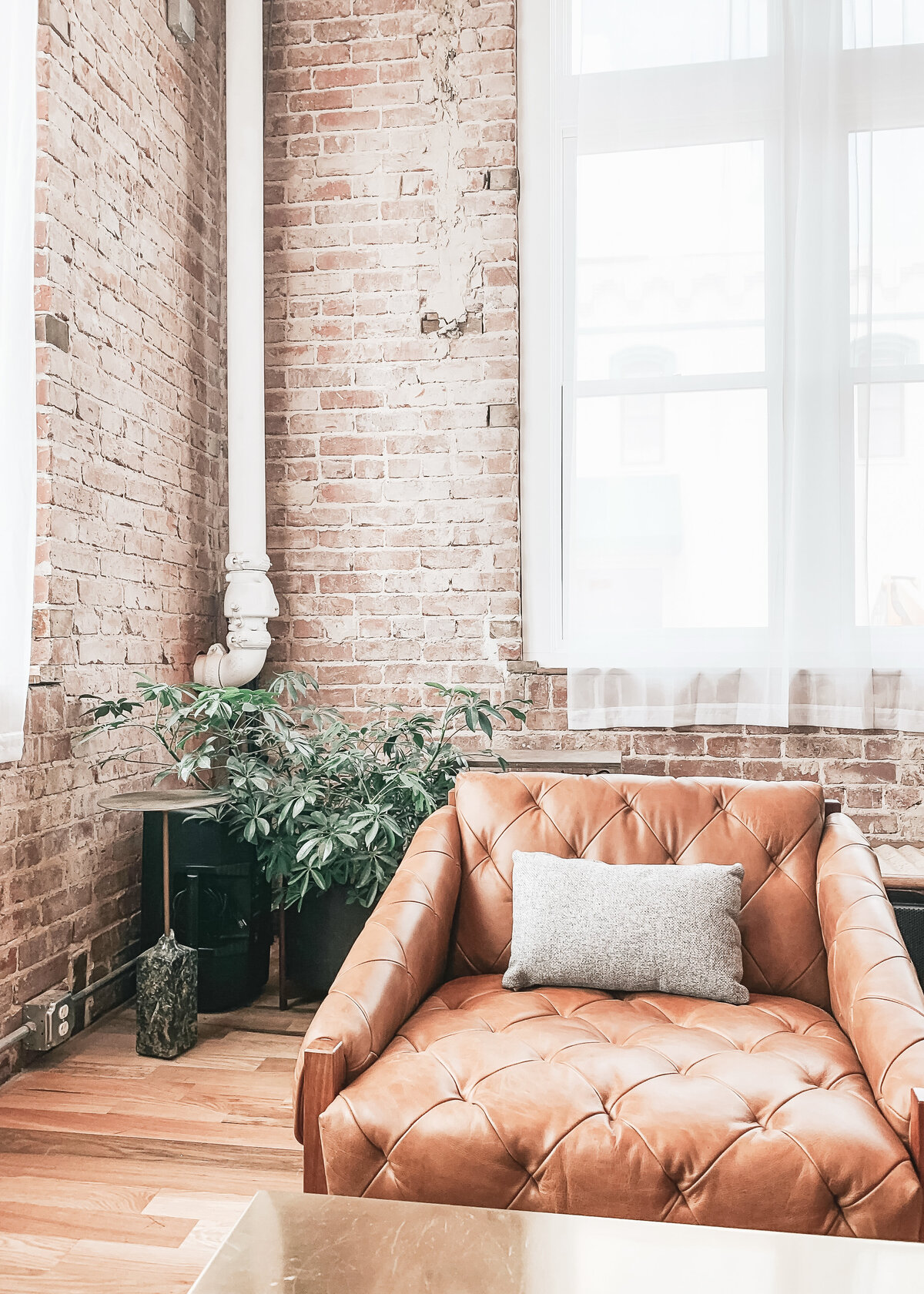 A leather chair sits against a brick wall in a light interior with a plant behind.