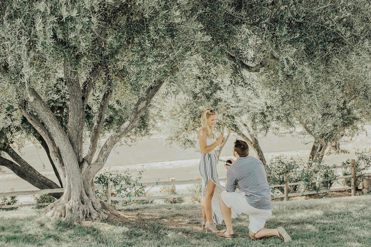 Babsie-Ly-Photography-Fine-Art-Film-Surprise-Proposal-Photographer-Temecula-Thornton-Winery-California-003
