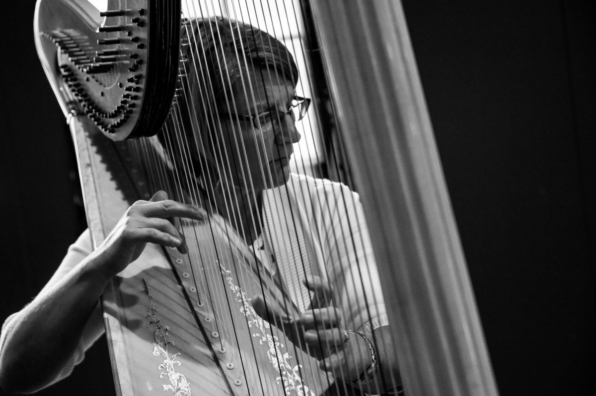 harpist at elegant wedding