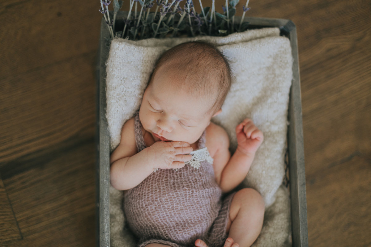 raleigh-newborn-photographers-Ella-0179