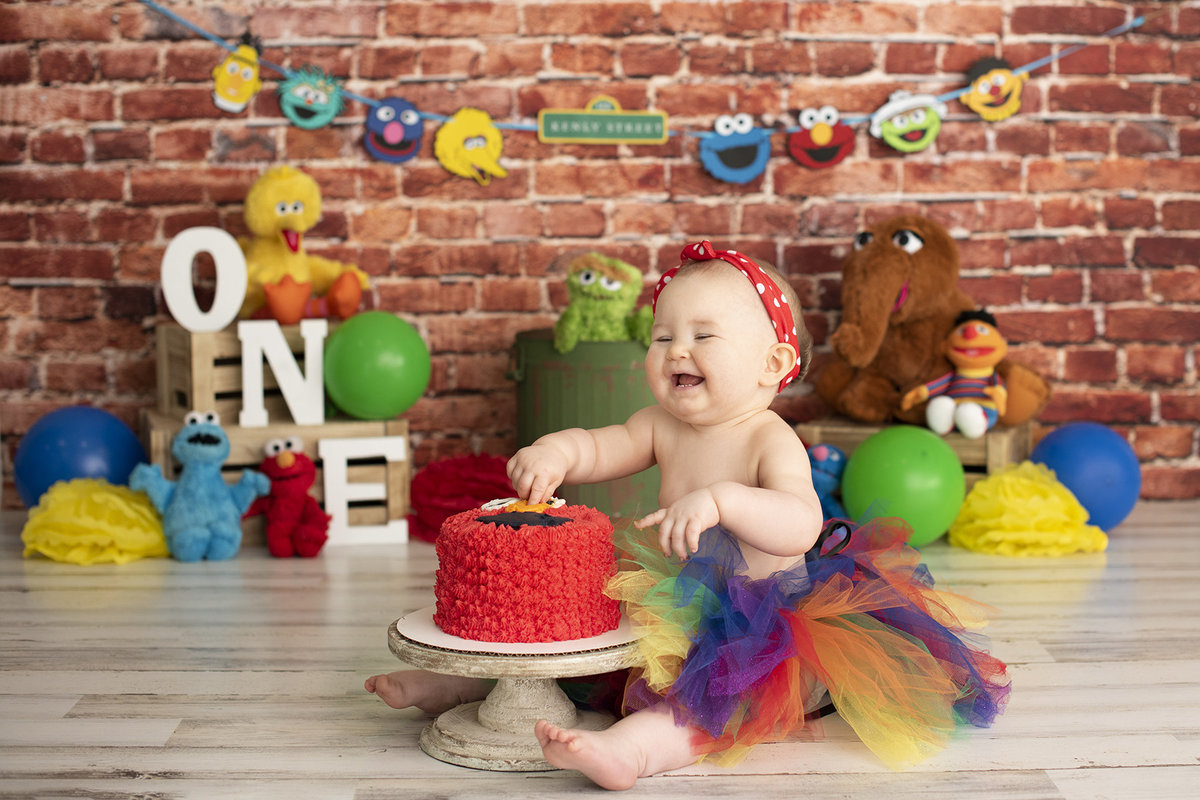 columbus ohio photographer cake smash first birthday sesame street big bird elmo