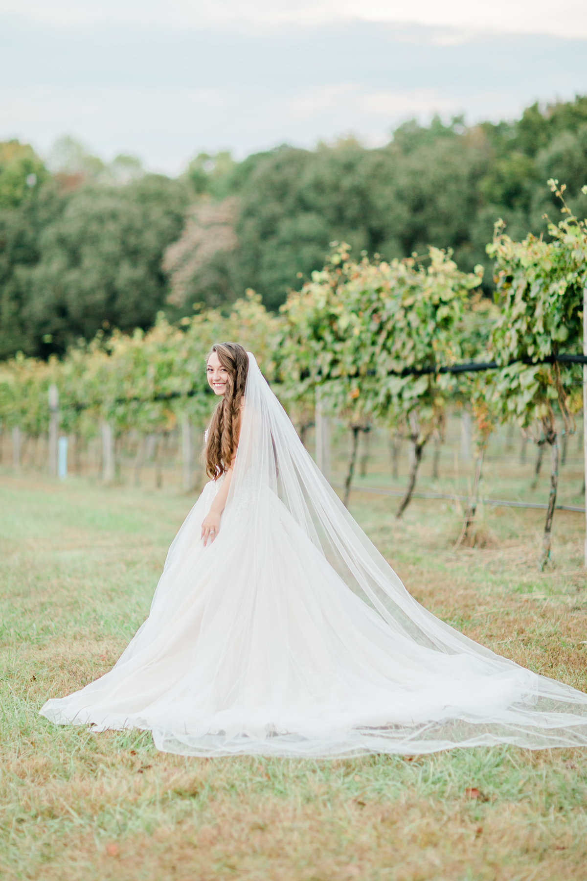 Williamsburg_Winery_Fall_Wedding_Virginia_DC_Photographer_Angelika_Johns_Photography-0009
