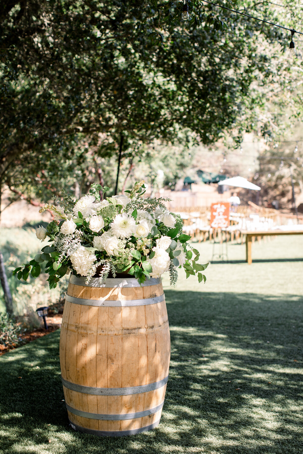 Solage_Calistoga_Auberge_Wedding-033