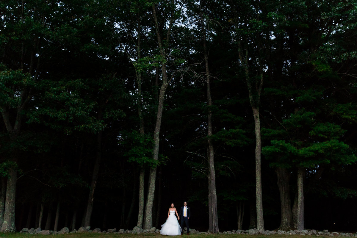 The newlyweds hold hands among the tall trees at Alnoba New Hampshire