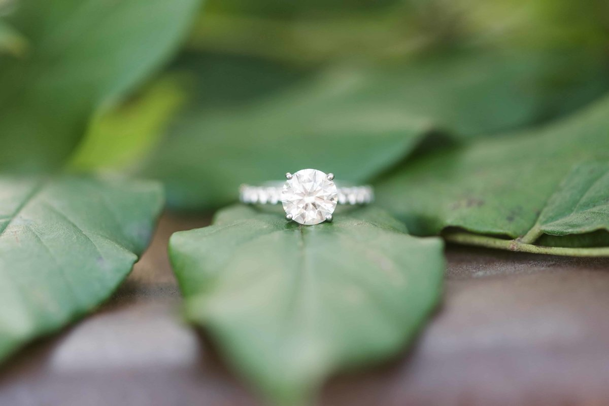 Diamind Engagement Ring micro shot.