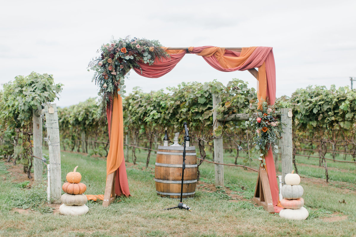 Bluestone_Vineyard_Fall_Wedding_Virginia_DC_Photographer_Angelika_Johns_Photography-4084