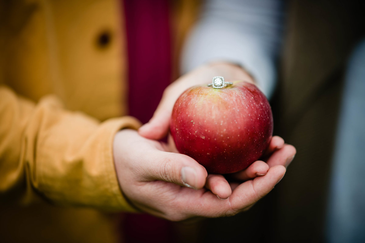 16 fall engagement photos with engagement ring on apple