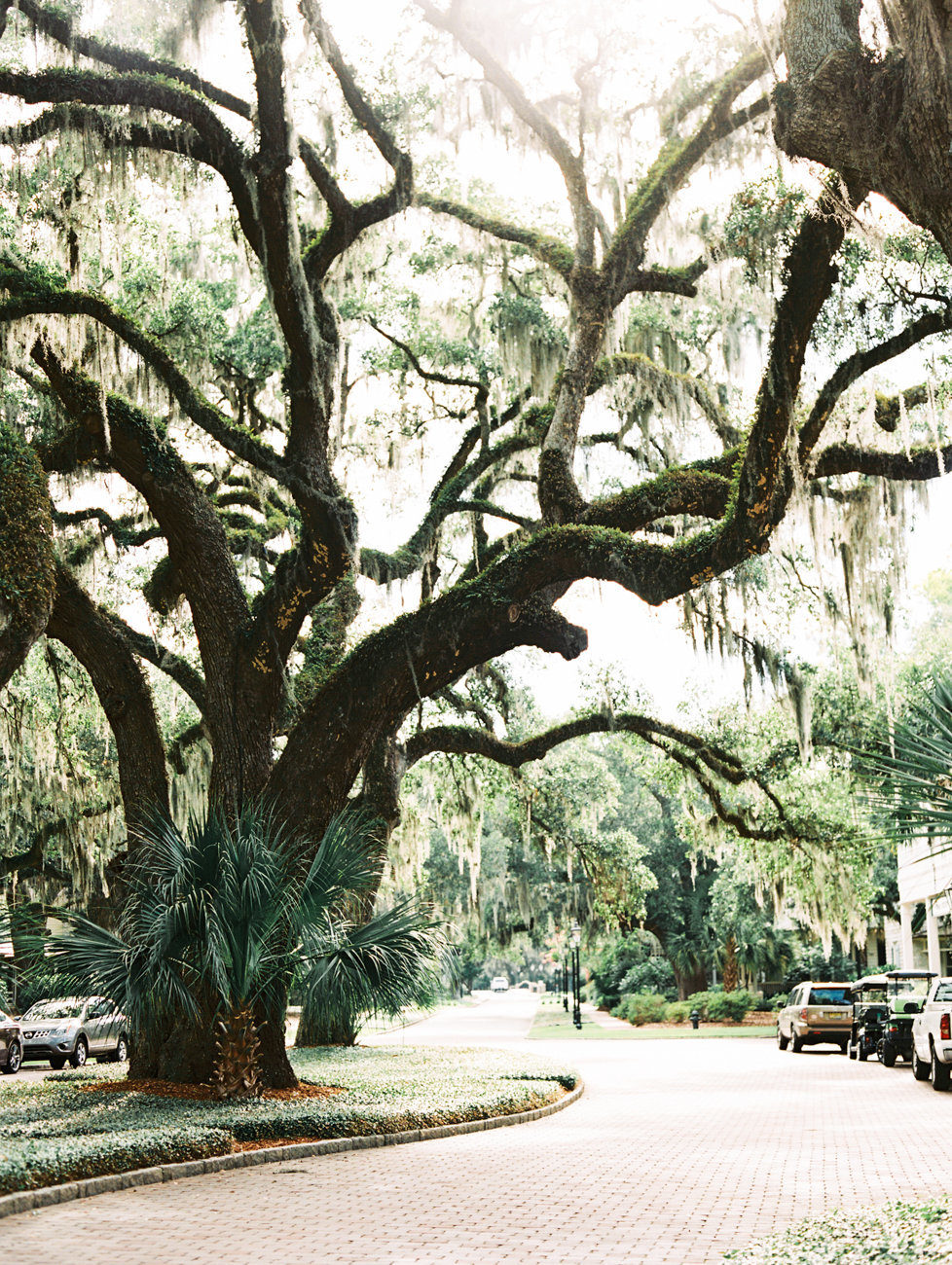 Palmetto_Bluff_Weddings-002