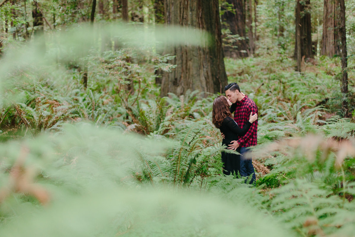 Redwood National Park Avenue of the Giants Engagement Session -7302