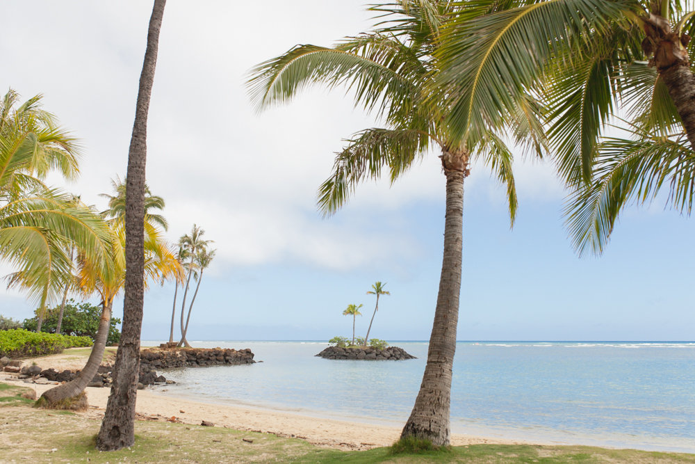View Oahu Beach Wedding Venues And Locations In Hawaii