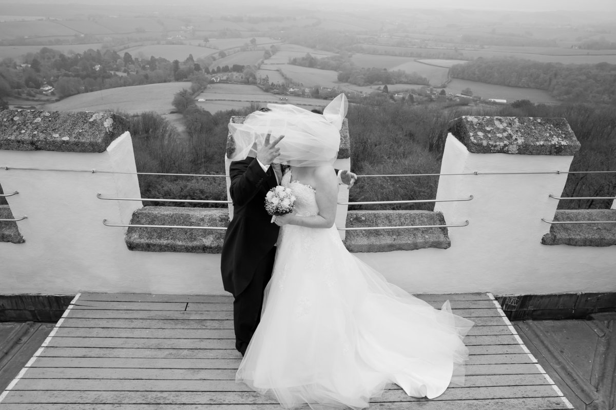 haldon belvedere wedding photography black and white