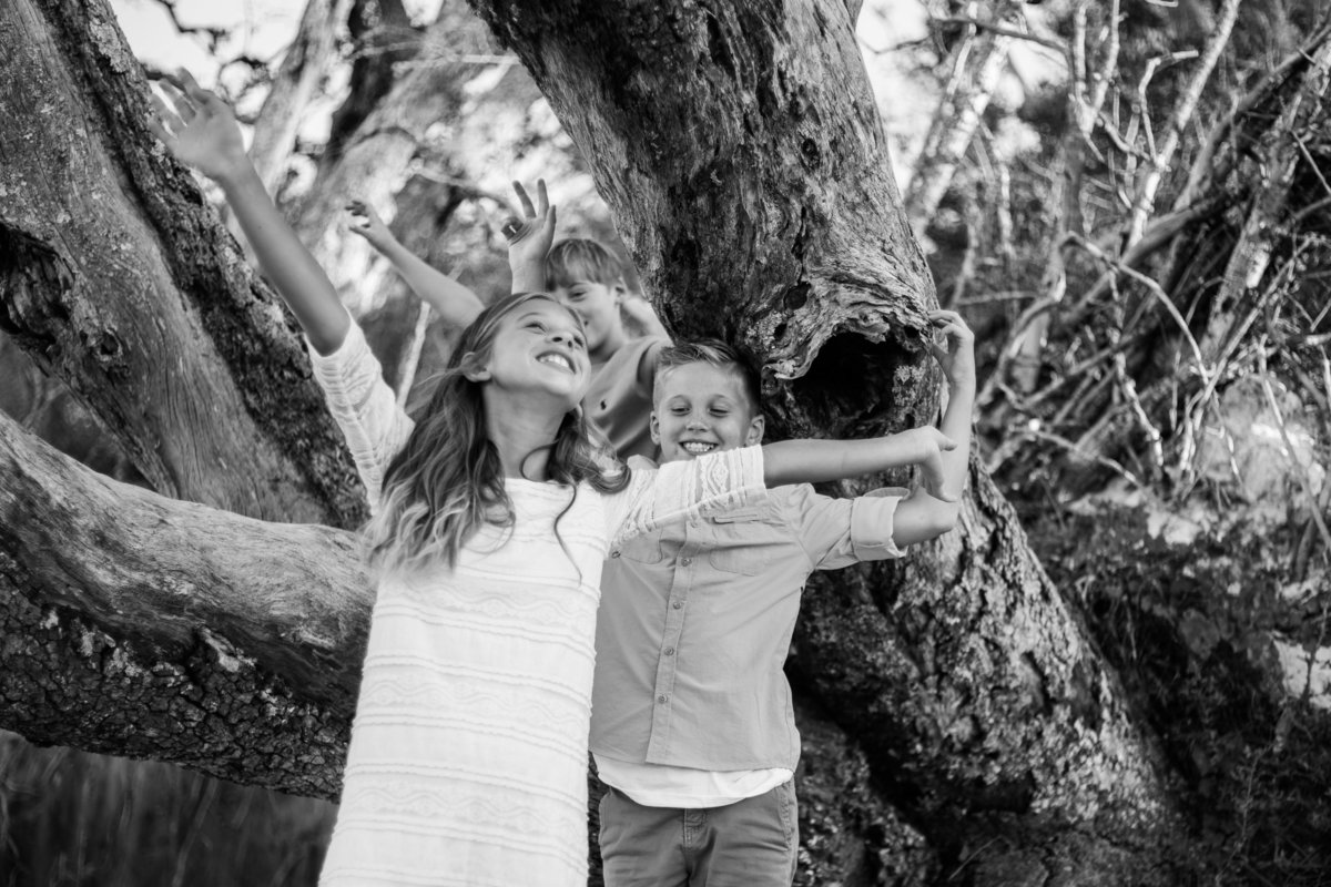 Jacksonville Family Photographer portrait of siblings playing on fallen trees at Big Talbot Island State Park