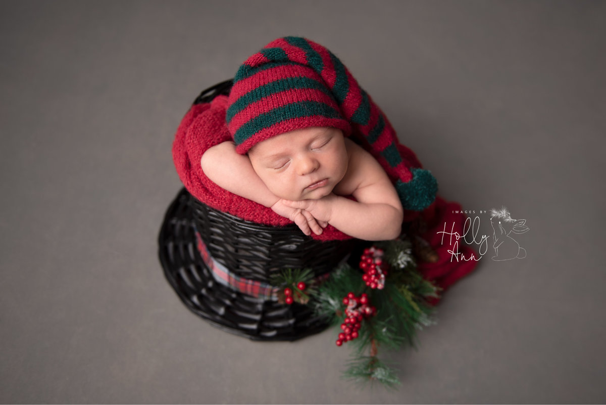 glens falls ny newborn christmas portrait session