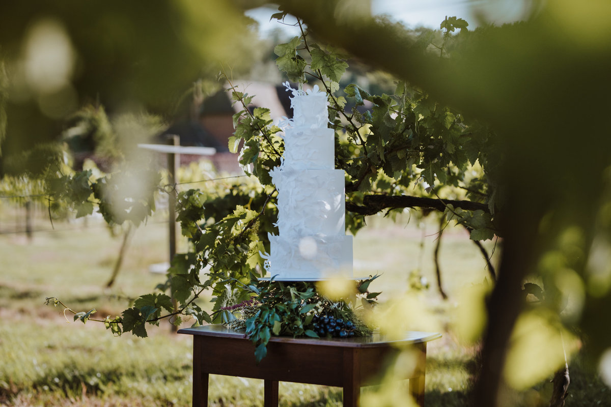 The Stars Inside - Vineyard Destination Wedding - Laura Martha Photography (90)
