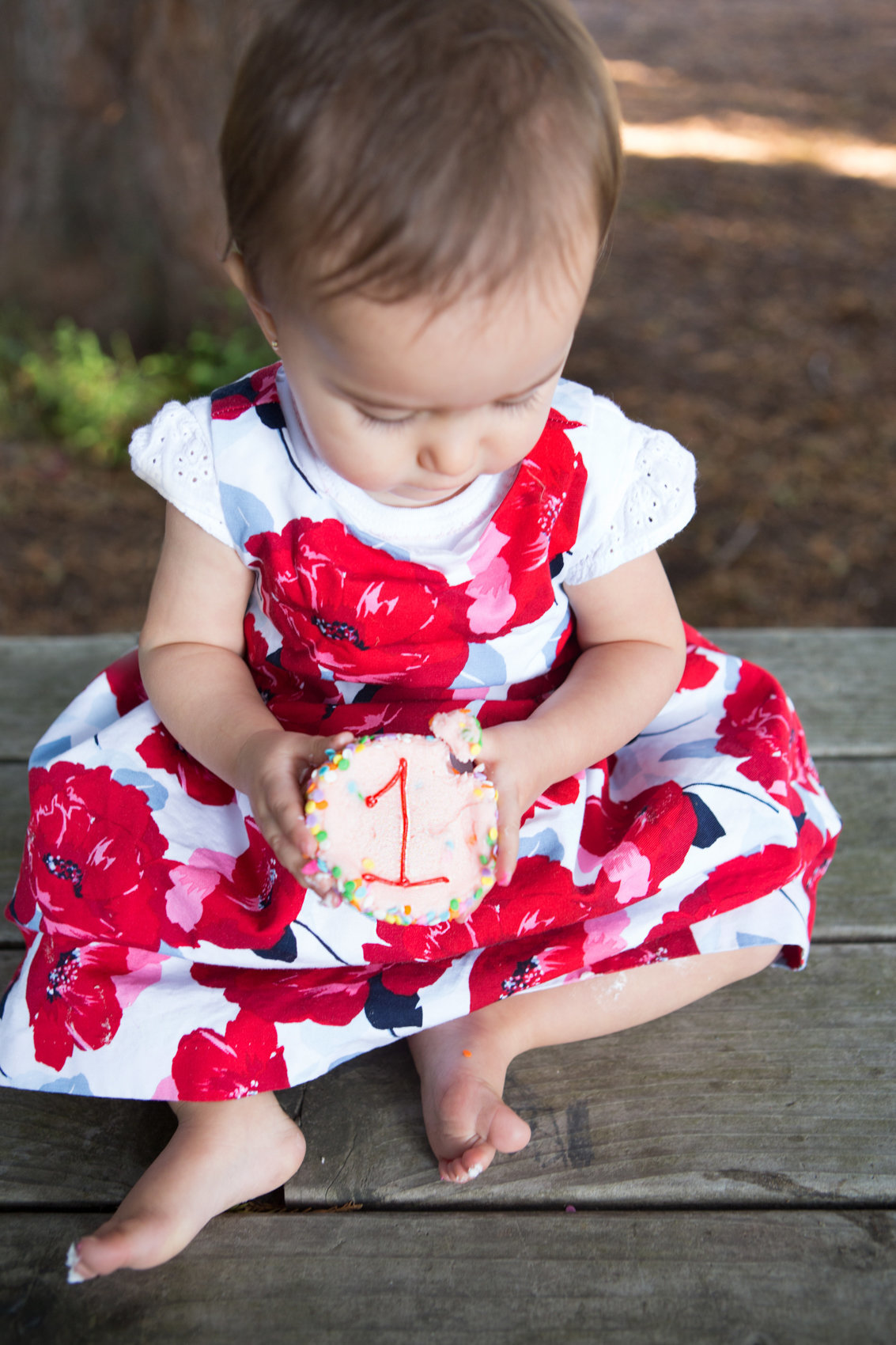 One Year Baby Photoshoot