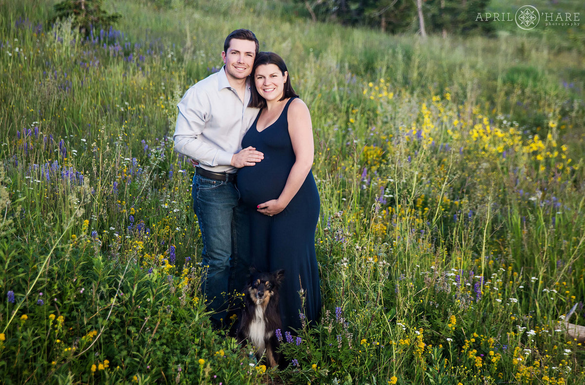 Colorado Maternity Photographer Dumont Lake Steamboat Springs