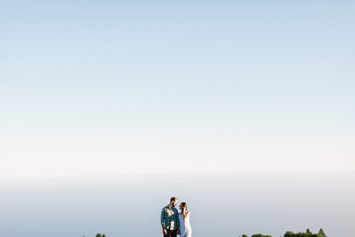 Surprise big sur proposal photographer