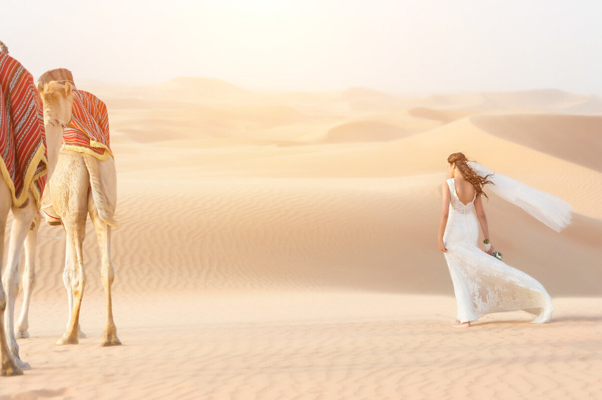 Bride with her lace wedding dress overlooking the Arabian desert dunes, elopement photoshoot organized by Lovely & Planned