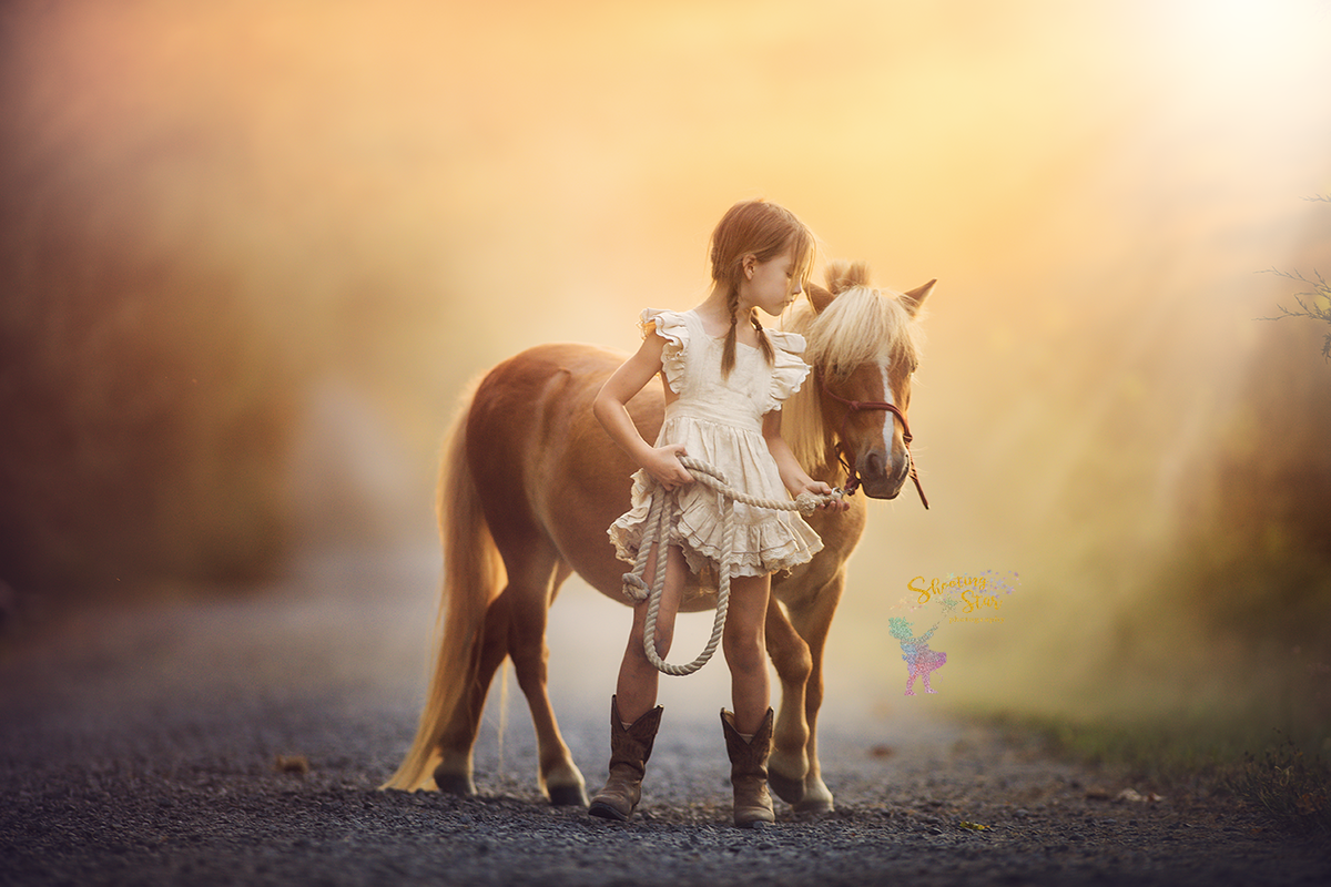 beautiful horse and girl capture in new jersey photo session