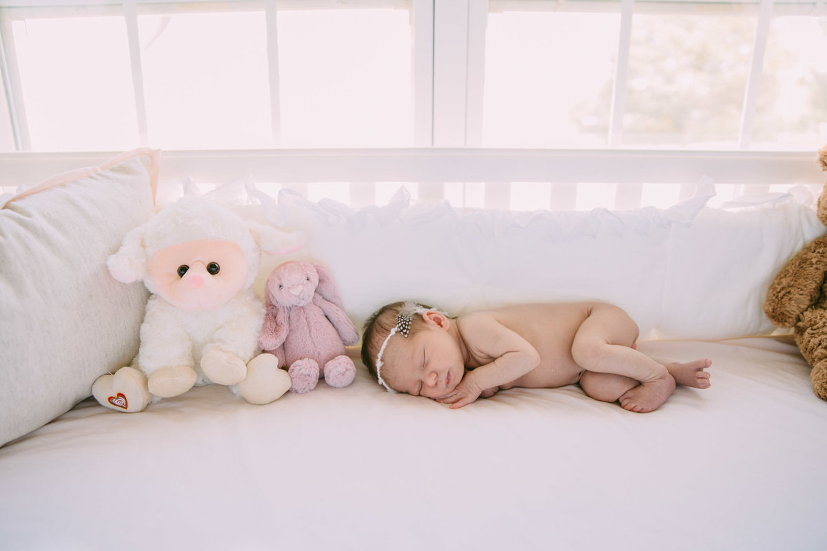 raleigh-Newborn-photographer-violet61602