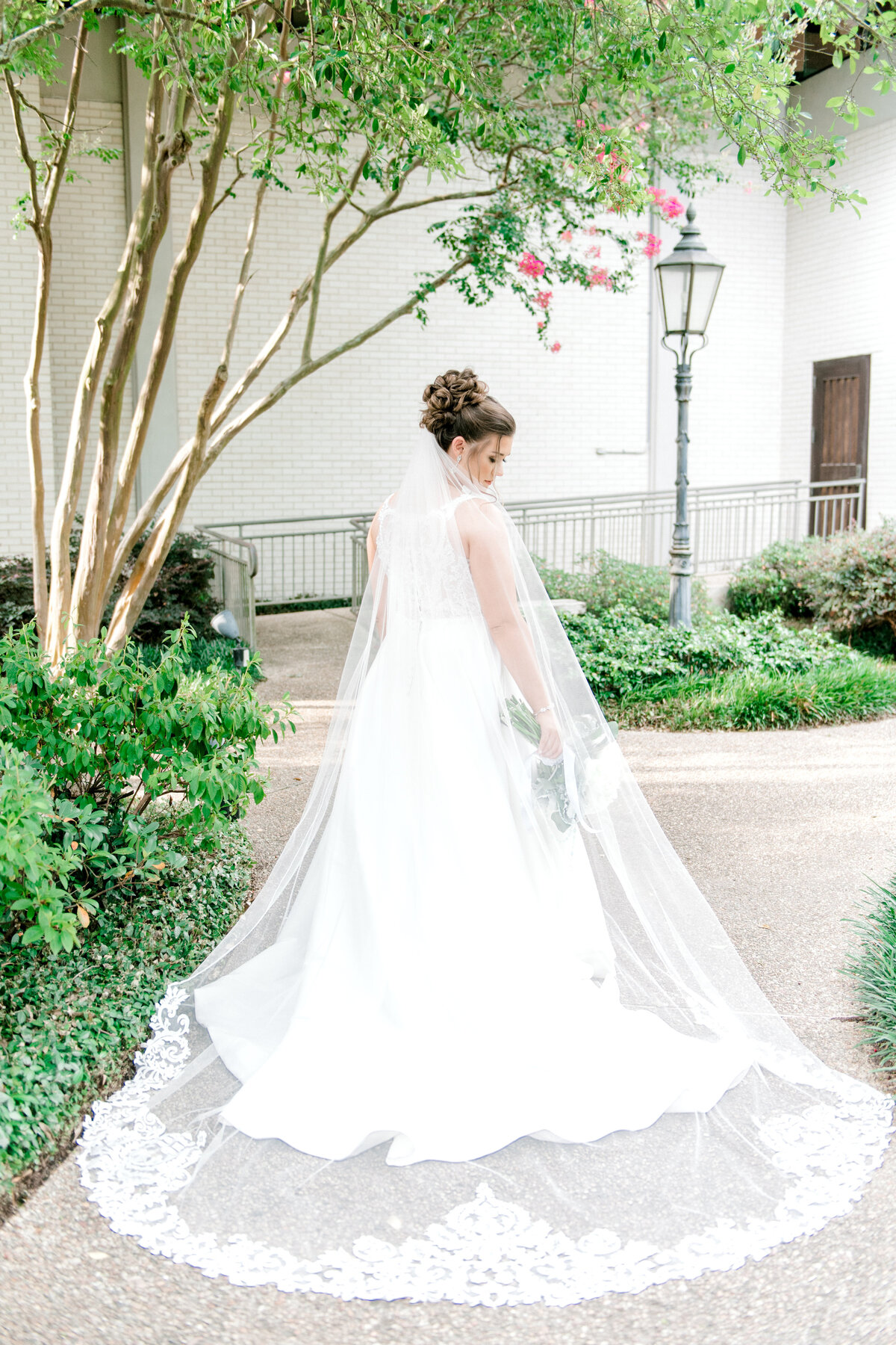 White Oak Estate Wedding-0184