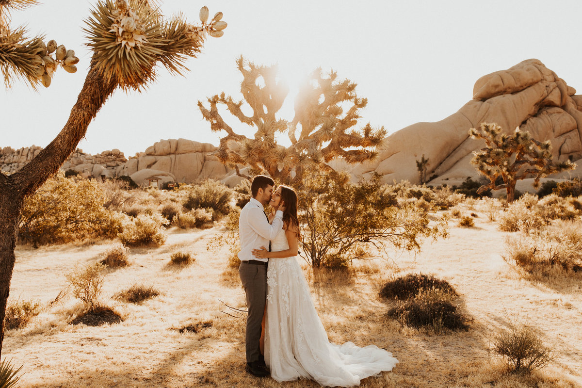 joshua-tree-elopement-1