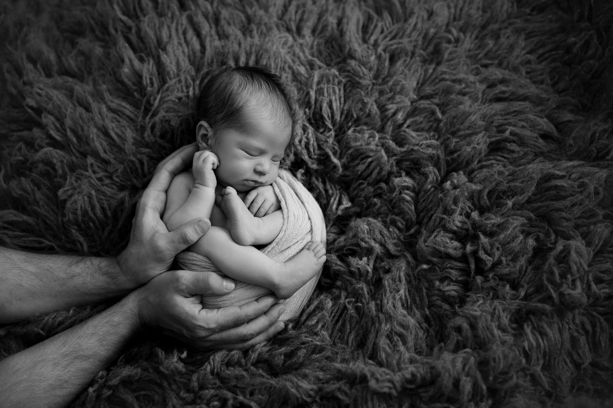 newborn photography thousand oaks