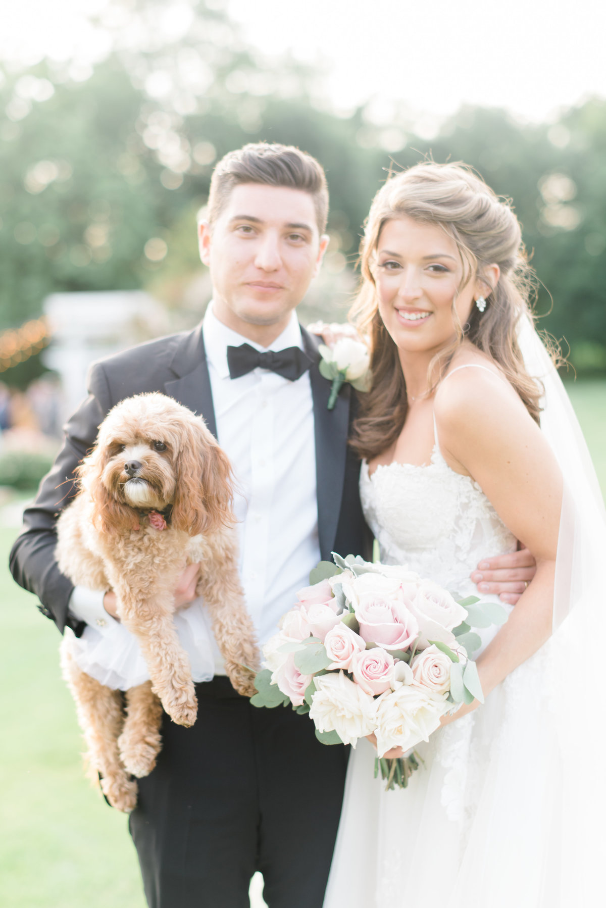 dog-with-bride-and-groom