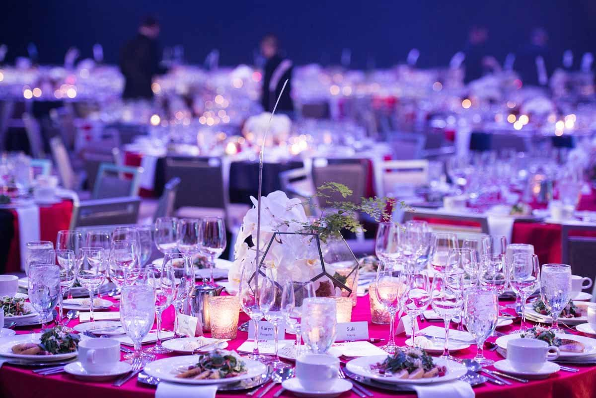 6Seattle-Gala-flora-nova-design