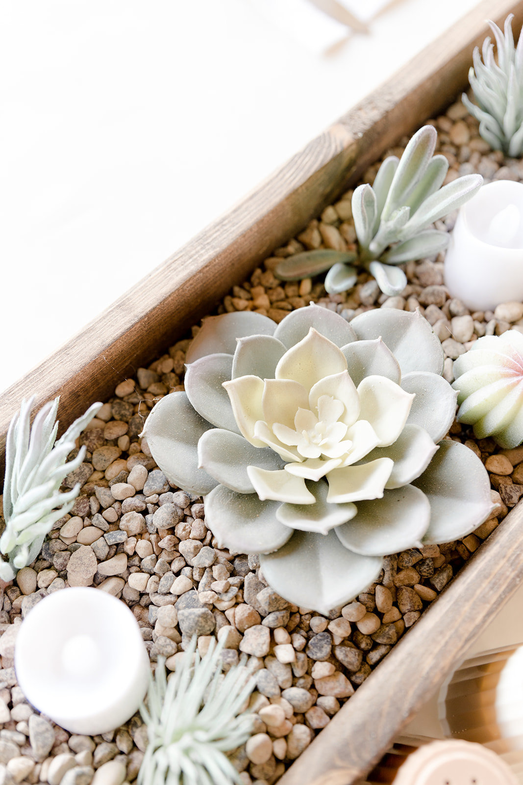 Succulent Centerpiece for Wedding