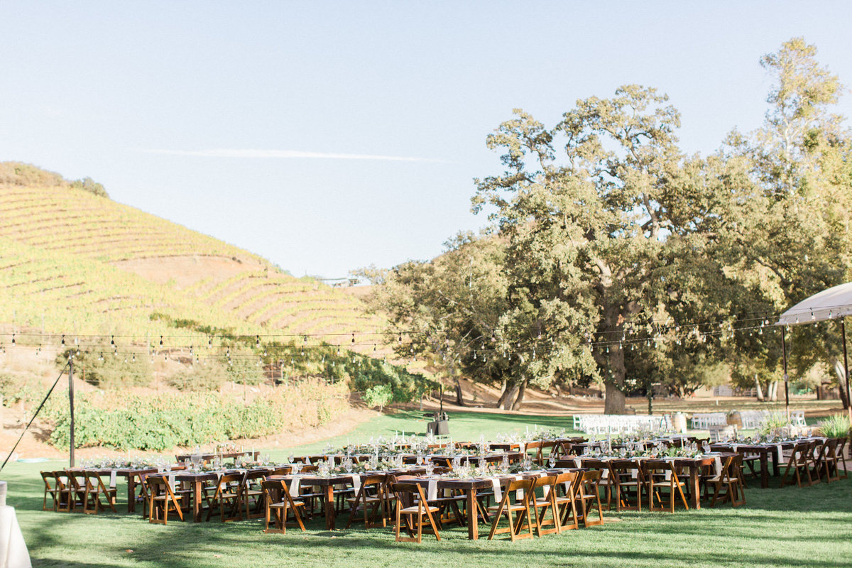 Triunfo Creek Vineyard Wedding-7049